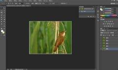 图片像素太低怎么办 把低像素图片变成高像素图片教程