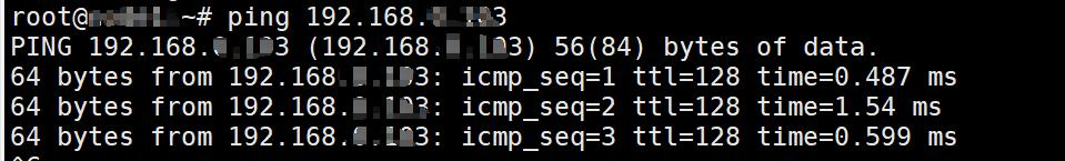 VMware选择VMnet8模式连接外网的方法